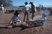 Curtis, branding at Johnson Ranch west of Carrizozo, NM, 1990